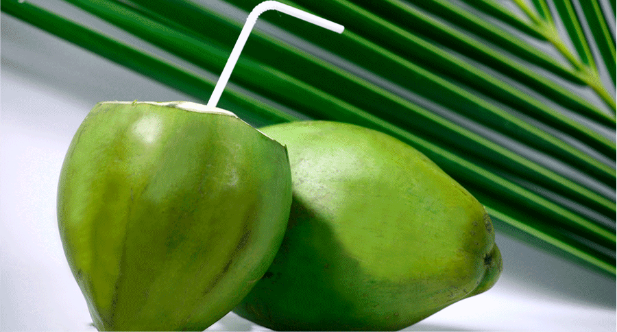 Green Coconut (Big)