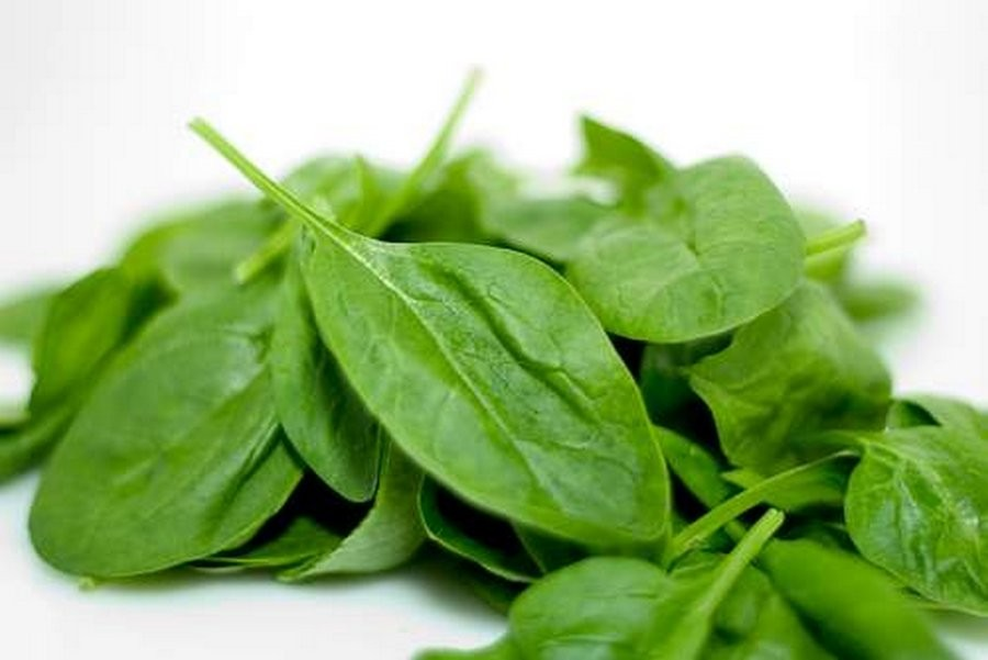 Fresh Spinach Green (Palak)