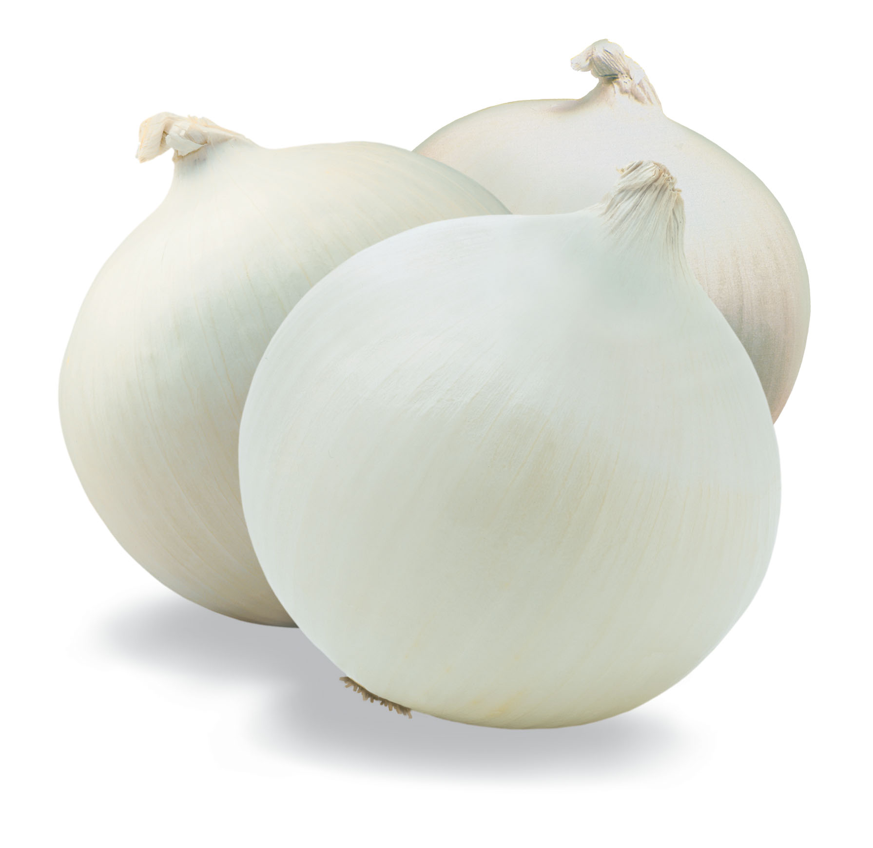 White Onion (Safed Pyaz)